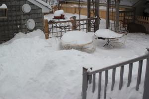 Snow 190226